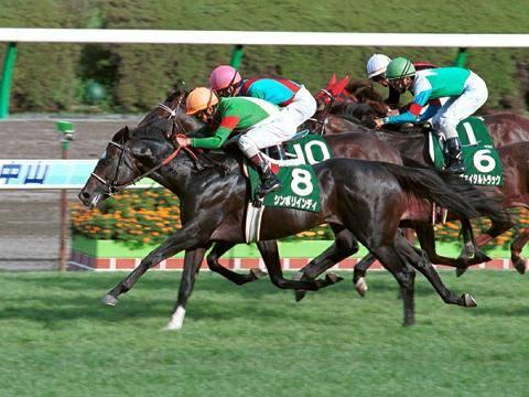 2001年09月10日 京成杯オータムハンデ 芝160...