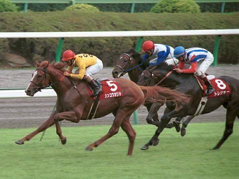 2001年09月16日 セントライト記念 芝2200m...