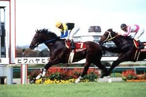2004年09月26日 神戸新聞杯 芝2400m 阪神競馬場