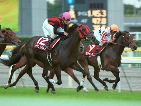 2001年10月07日 毎日王冠 芝1800m 中山競馬場