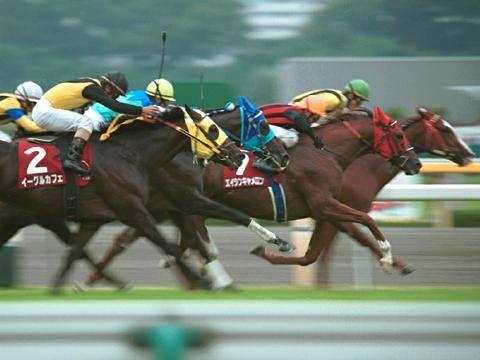 2000年10月08日 毎日王冠 芝1800m 東京競馬場