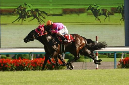 2004年10月10日 京都大賞典 芝2400m 京都競馬場