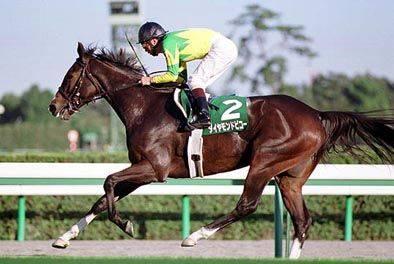 2002年10月13日 府中牝馬ステークス 芝1800...