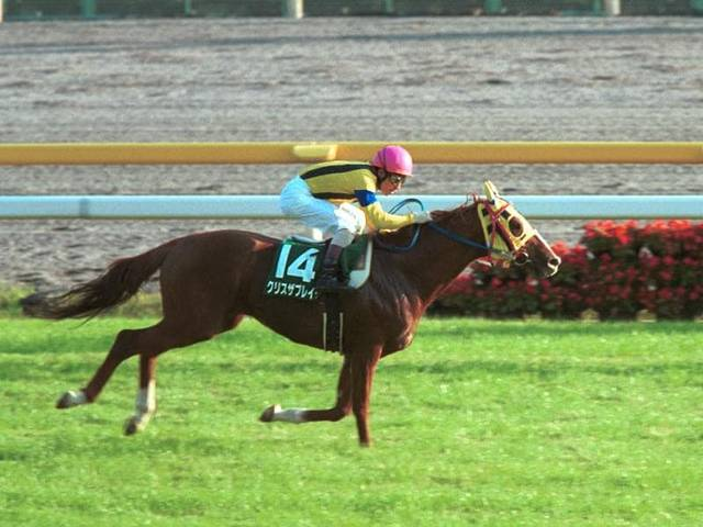 2001年10月20日 富士ステークス 芝1600m ...