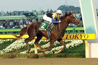 2003年11月01日 武蔵野ステークス ダート160...