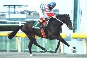 2000年10月28日 武蔵野ステークス ダート160...