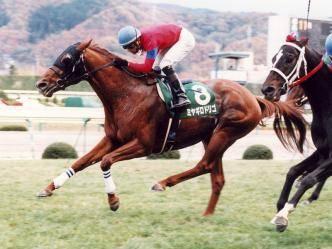 2001年11月17日 福島記念 芝2000m 福島競馬場