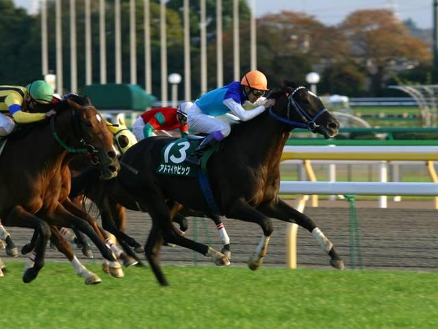 2003年11月22日 東京スポーツ杯2歳ステークス ...