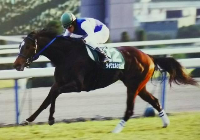 2004年11月27日 京阪杯 芝1800m 京都競馬場