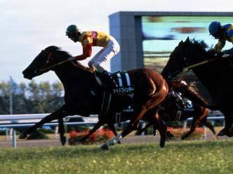 2002年11月23日 京阪杯 芝1800m 京都競馬場