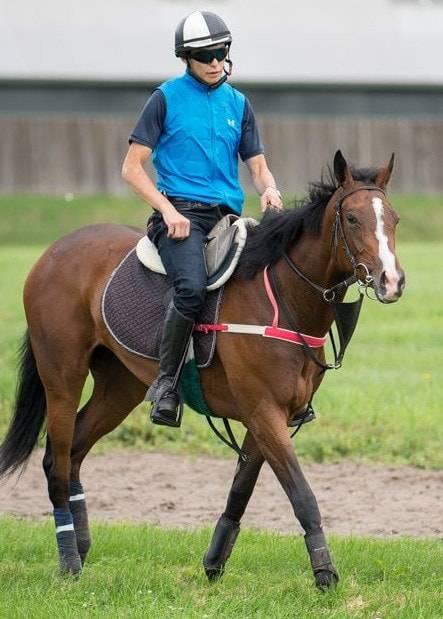 小柄な馬体も品の良さは確かなエリスライト