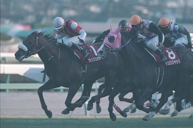 2004年01月25日 AJCC 芝2200m 中山競馬場
