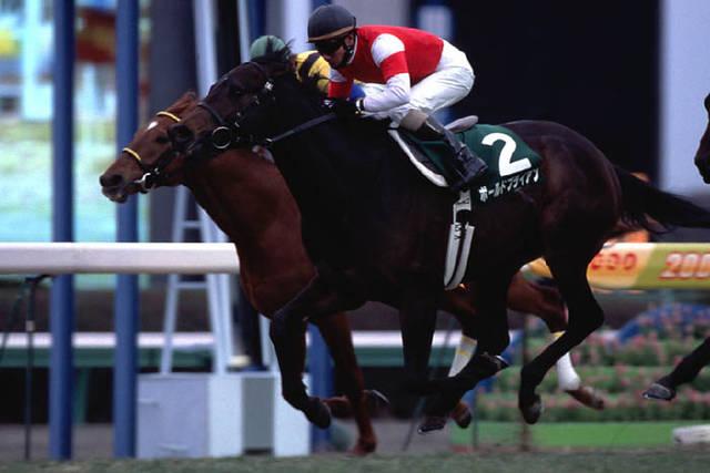 2003年02月02月 東京新聞杯 芝1600m 中山競馬場