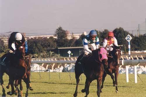 2001年01月30日 東京新聞杯 芝1600m 東京競馬場