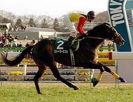 2005年02月06日 共同通信杯 芝1800m 東京競馬場
