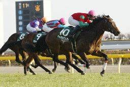 2004年02月08日 共同通信杯 芝1800m 東京競馬場