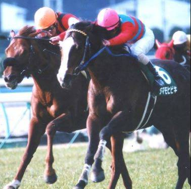 2002年02月03日 小倉大賞典 芝1800m 小倉競馬場