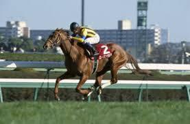 2003年03月02日 中山記念 芝1800m 中山競馬場