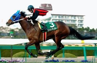2005年03月05日 チューリップ賞 芝1600m ...