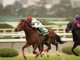 2002年03月02日 チューリップ賞 芝1600m ...