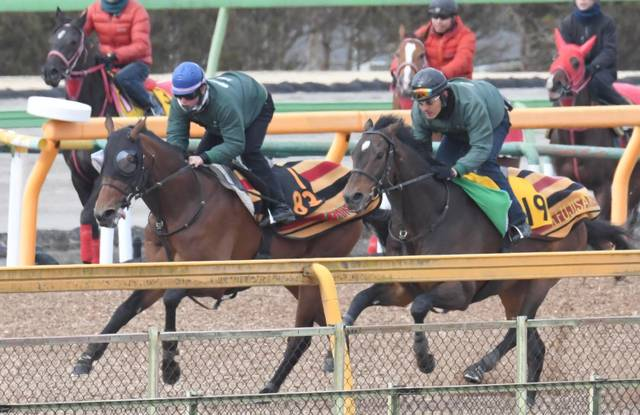 馬体も動きもパワフルさが増したオブセッション(左)