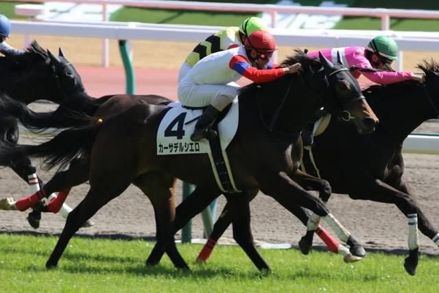 新馬戦を素質十分の走りで快勝したカーサデルシエロ