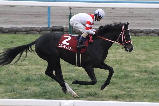 カポーティスター(サビアーレ2009)