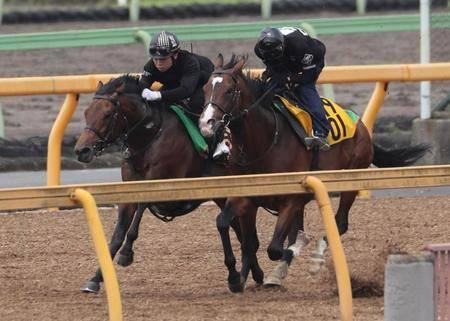 僚馬と併走して追い切るルヴァンスレーヴ(左)