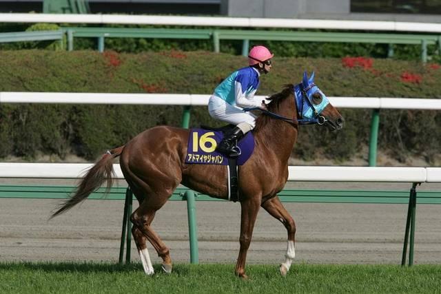 アドマイヤジャパン(ビワハイジ2002)