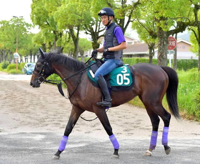 日本を代表する血統馬のブラヴァス