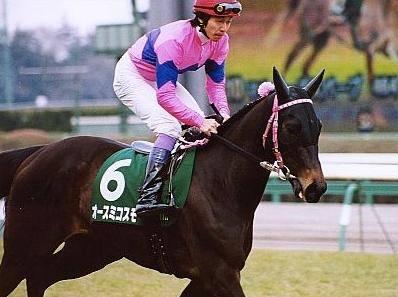 オースミコスモ(タイセイカグラ1999)