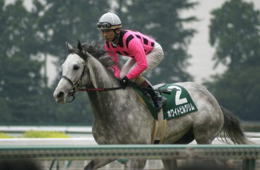 ホワイトピルグリム(オーバルカット2005)