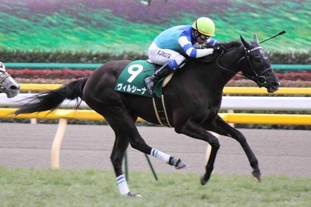 ヴィルシーナ(ハルーワスウィート2009)