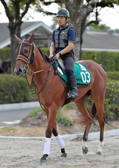 スピード感ある走り、素質馬のイベリス