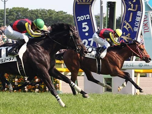 2012年日本ダービー2着フェノーメノに騎乗