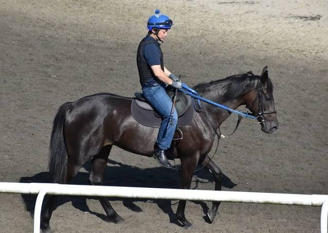 トレセン内でも一際目立つ好馬体のリアオリヴィア