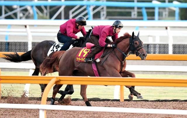 圧巻の動きで併走馬を圧倒するラッキーライラック