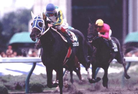 ニホンピロジュピタ(ニホンピロクリア1995)