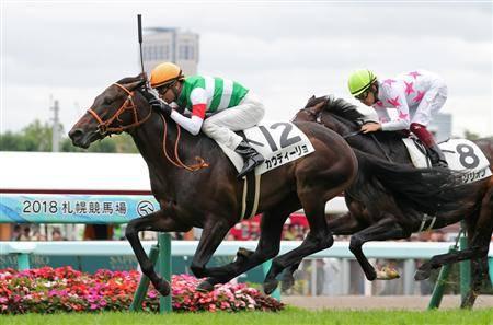 新馬戦ではさすがの走りを見せたカウディーリョ