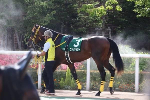 重賞馬というキャリアがあるニシノデイジー