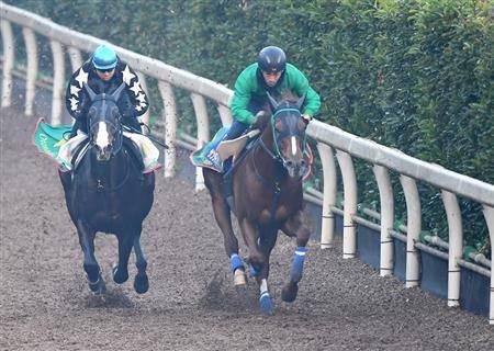 ダンビュライトと豪華な併せ馬を行ったサンライズノヴァ(右)