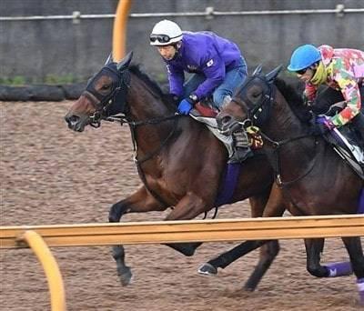 併走馬相手に絶好の動きで先着するレッドアネモス(左)