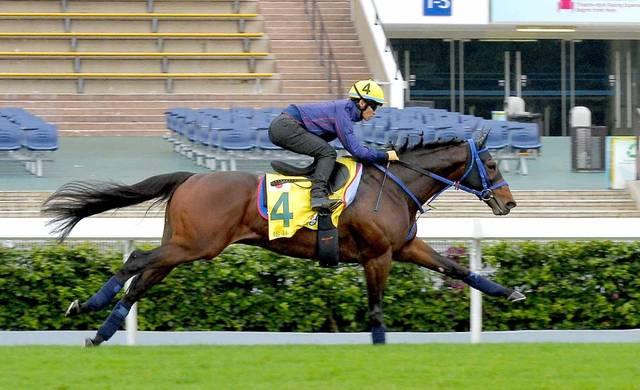 川田騎手を背に伸び伸びと走るファインニードル