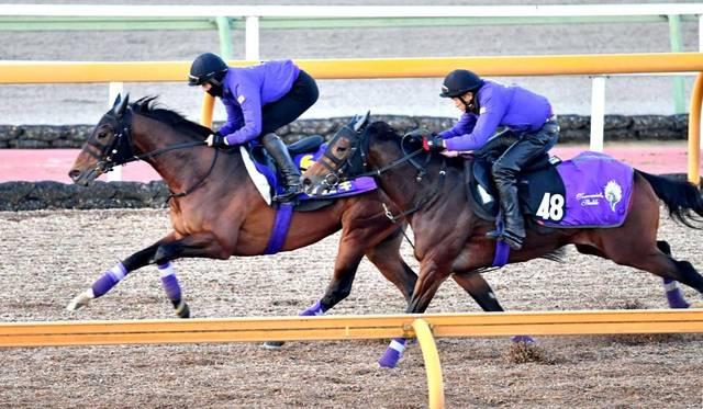 併走馬を相手に楽々と先着するマカヒキ(左)