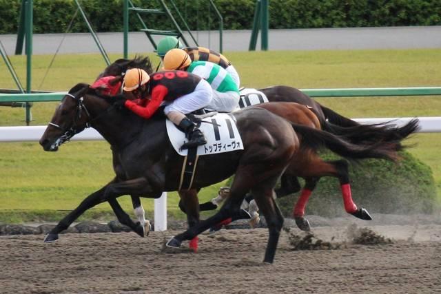 トップディーヴォ(セクシーザムライ2012)