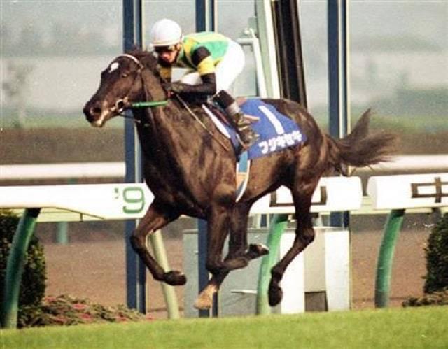 フジキセキ(ミルレーサー1992)