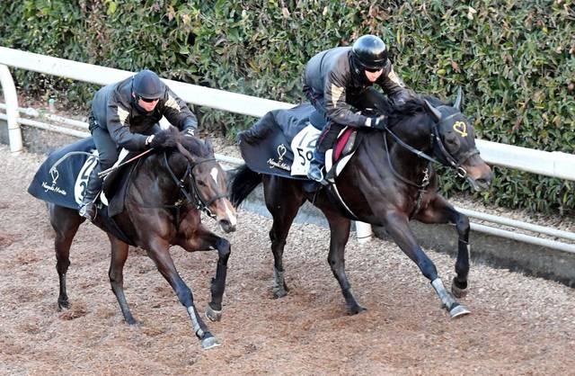 森田直行厩舎の2枚看板が併せ馬で追い切り