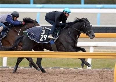 併せ馬で楽に先着を果たすクロノジェネシス
