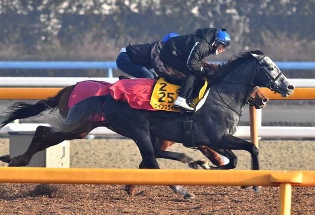 松岡騎手を背にきっちりと仕上がったウインブライト