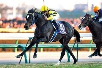 ハーツクライ(アイリッシュダンス2001)